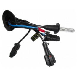 Лампа ксеноновая Sho-Me H1 Standard 4300K